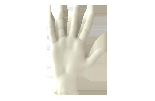 Manatee-Glove