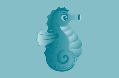 Seahorse-Image